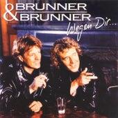 Wegen dir... by Brunner & Brunner