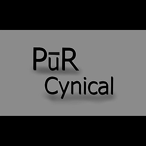 Cynical - Single by Pur