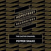 Pepper Snake/The Dap by The Cactus Channel