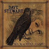 The Blackbird Diaries by Dave Stewart