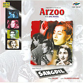 Arzoo / Sangdil by Various Artists