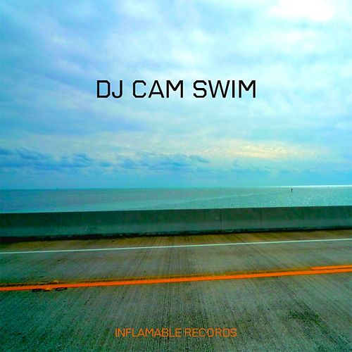 Swim by DJ Cam