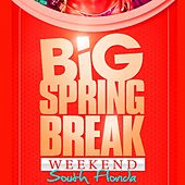 Big Springbreak Week End 2011 by Various Artists