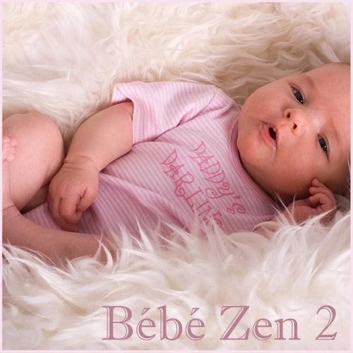 Bébé Zen 2 by Various Artists