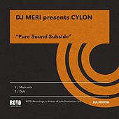 Pure Sound Subside by DJ Meri