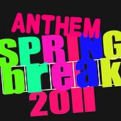 Springbreak Anthem by Various Artists