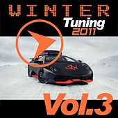 Winter Tuning 2011, Vol. 3 by Various Artists