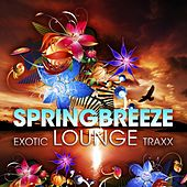Springbreeze Exotic Lounge Traxx, Vol. 1 (Cafe Del Buddah Chill Out Edition) by Various Artists