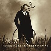 Seesaw Sway by Peter Murphy