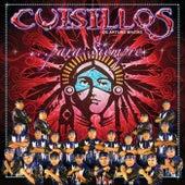 Para Siempre by Banda Cuisillos