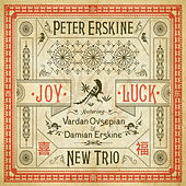 Joy Luck by Peter Erskine New Trio