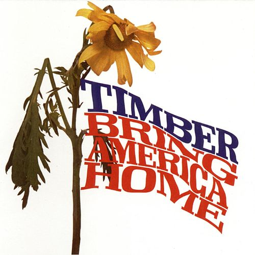 Bring America Home by Various Artists