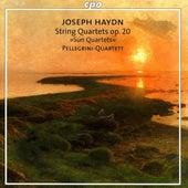 Haydn, F.J.: Sun Quartets, Op. 20 by Pellegrini Quartet