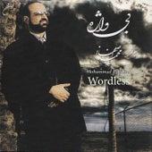 Bi Vajeh(Wordless) by Mohammad Esfahani
