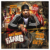 Southern Slang 20 by Various Artists