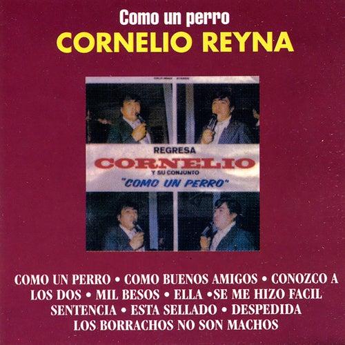Como Un Perro by Cornelio Reyna