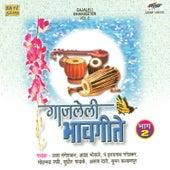 Gajaleli Bhavgeeten Vol 2 by Various Artists