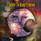 A Salute To King Crimson von Various Artists