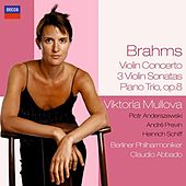 Brahms: Violin Concerto, Sonatas etc. by Various Artists