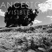Invisible White by Ancestors