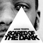 Scared Of The Dark by Adam Tensta