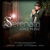 Serenata by Jorge Muñiz