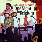 One Night In Belgium by Sue Palmer