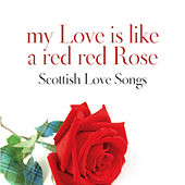 My Love Is Like A Red, Red Rose: Scottish Love Songs by Various Artists
