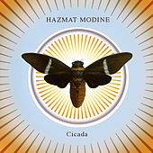 Cicada by Hazmat Modine