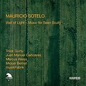 Sotelo: Wall of Light - Music for Sean Scully by Various Artists