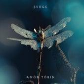 Surge von Amon Tobin