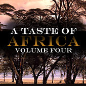 A Taste Of Africa Vol 4 by Various Artists
