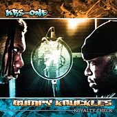 Royalty Check by KRS-One
