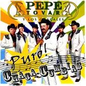 Puro Chaca-Cumbias by Pepe Tovar Y Los Chacales