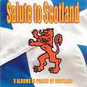 Salute To Scotland by Various Artists