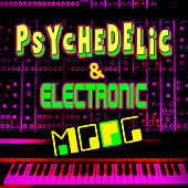 Psychedelic & Electronic Moog by Emil Richards