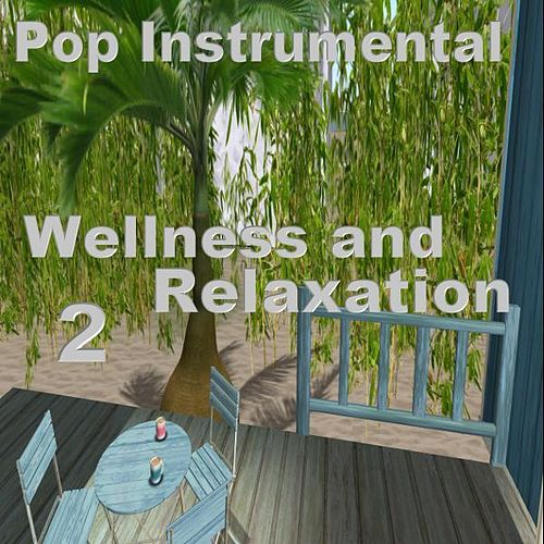 Wellness and Relaxation 2 by Various Artists