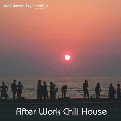 After Work Chill House by Various Artists