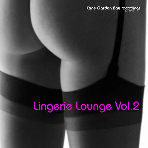 Lingerie Lounge Vol.2 by Various Artists