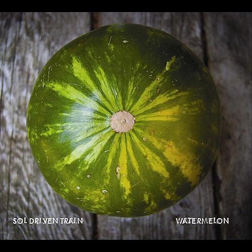 Watermelon by Sol Driven Train