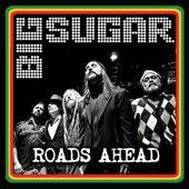Roads Ahead - Single by Big Sugar