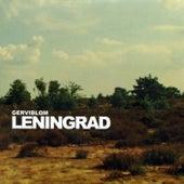 Gerviblom by Leningrad