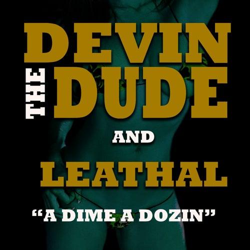 A Dime A Dozen von Devin The Dude