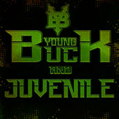 My Status by Young Buck