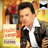 Hoy by Palito Ortega
