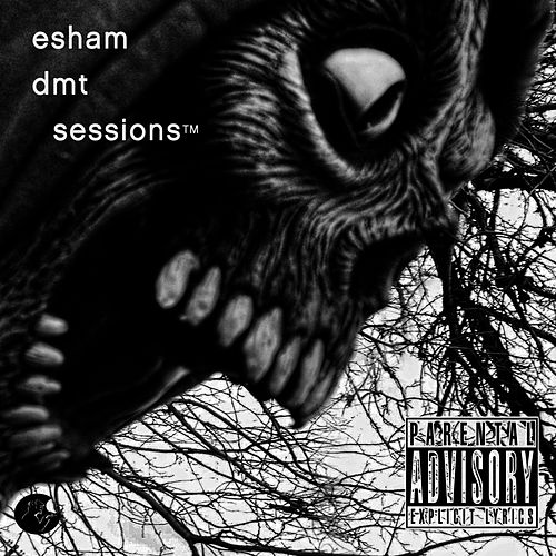 DMT Sessions by Esham