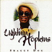 Shaggy Dog by Lightnin' Hopkins