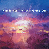 Rainforest/What's Going On - EP by Paul Hardcastle