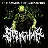 The Anatomy of Execution by Strychnia