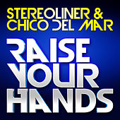 Raise Your Hands by Stereoliner